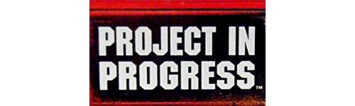 Project in Progress